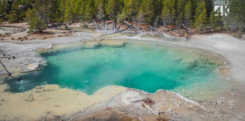 The Amazing Yellowstone National Park